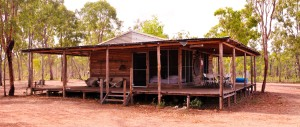 Cabin Accommodation Wiligi